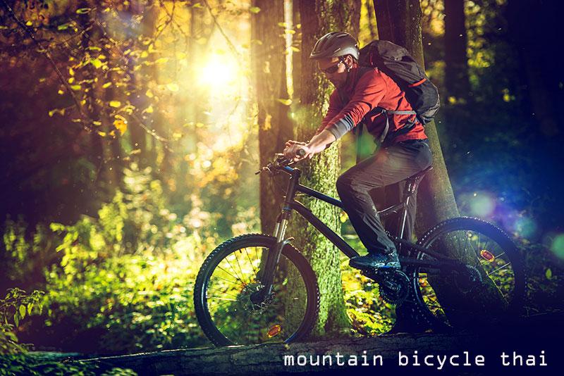 จักรยานเสือภูเขายี่ห้อไหนดี